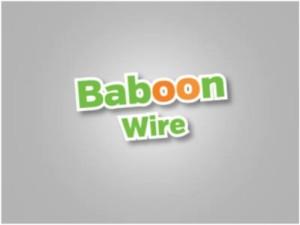 BaboonWire