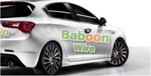 BaboonWire_produkt
